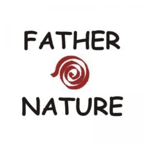 Father Nature Lavash Bistro