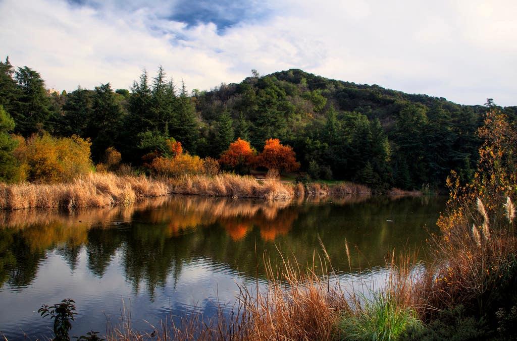 Franklin Lake at Franklin Canyon Park