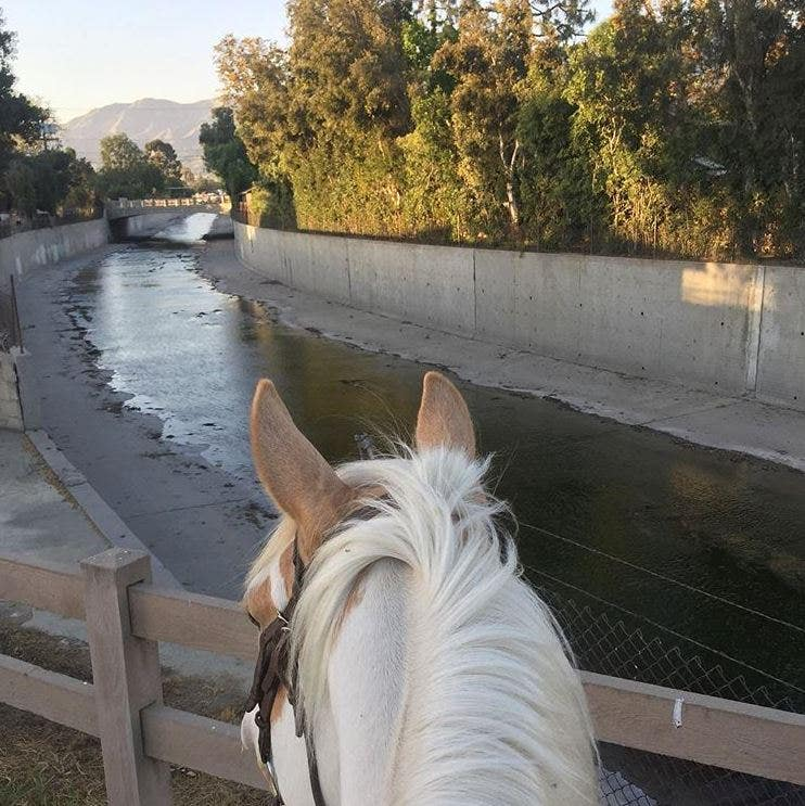 Los Angeles River | Instagram by @careaboutmypics