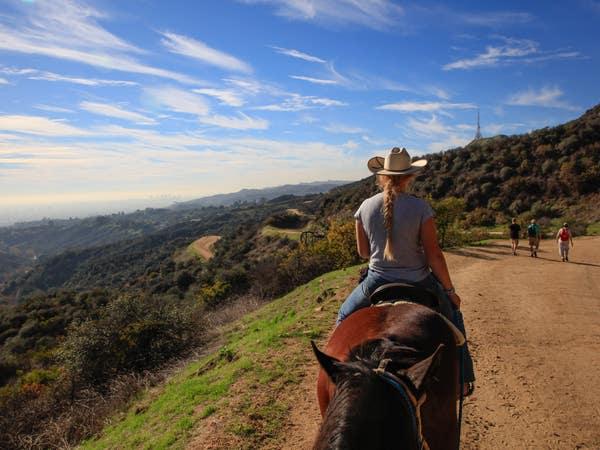 View from the saddle at Sunset Ranch Hollywood   |  Photo: Yuri Hasegawa