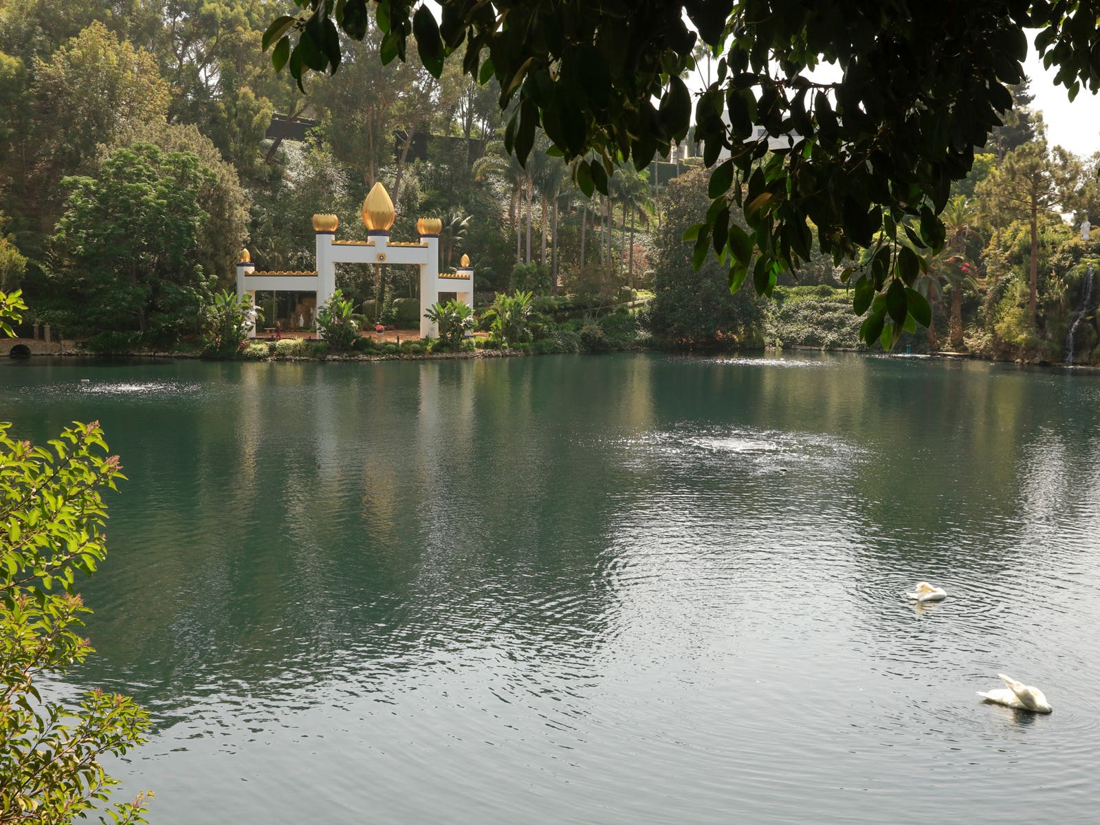 Golden Lotus Temple and swans at the Self Realization Fellowship Lake Shrine