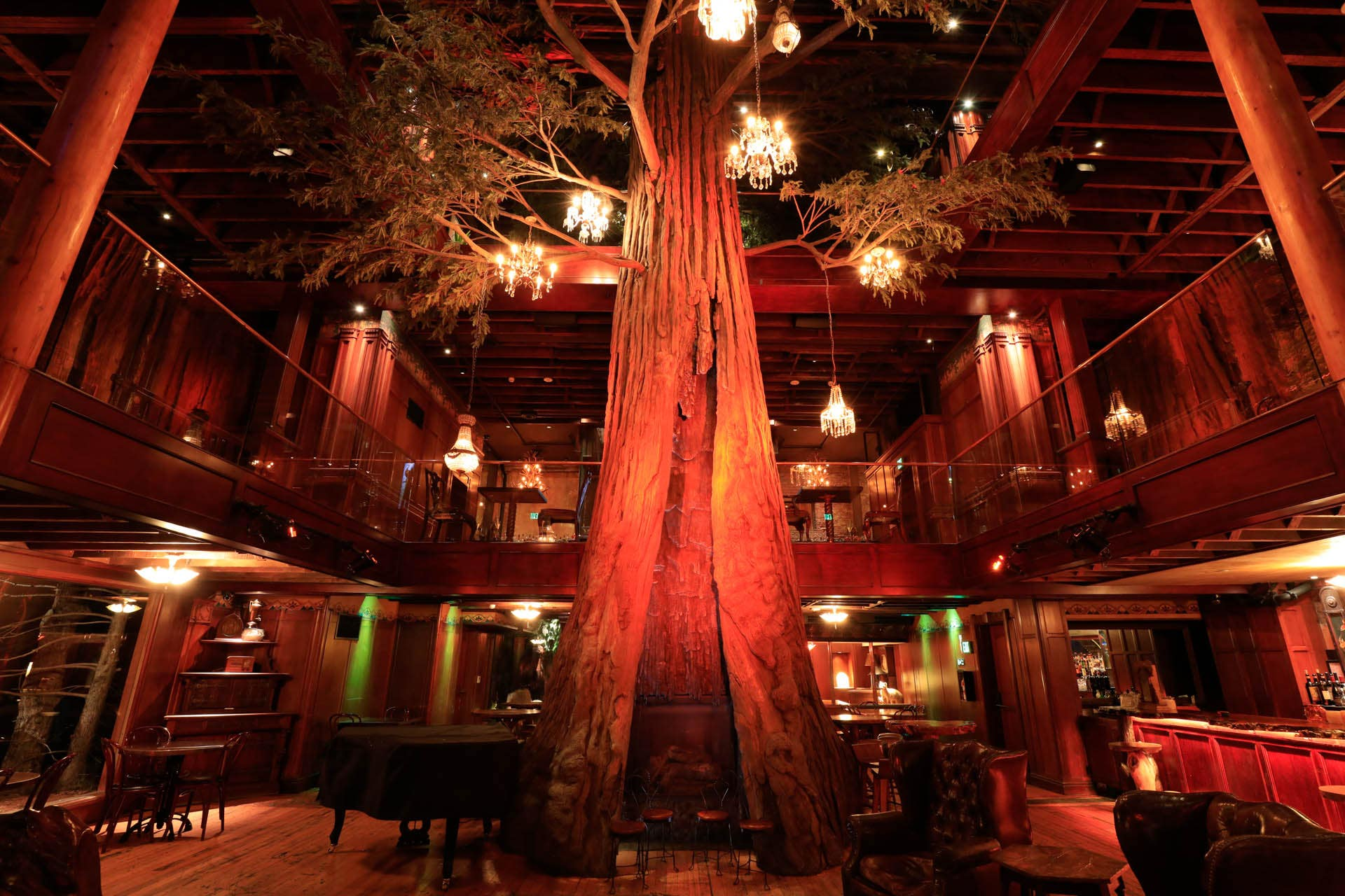 Clifton's Republic Redwood Tree