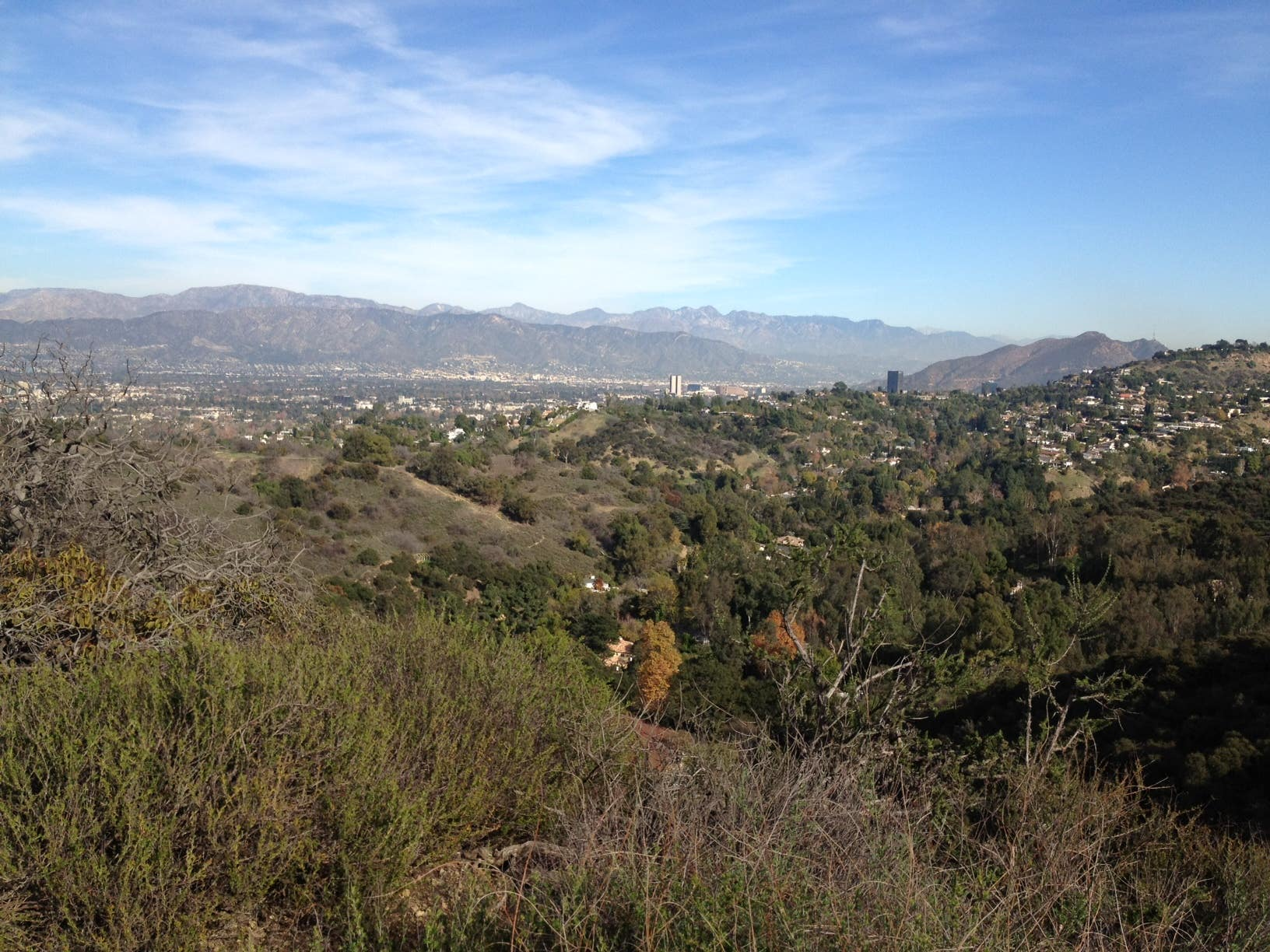 Studio City viewed from TreePeople | Photo: Kristen Neveu, Discover Los Angeles Flickr Pool