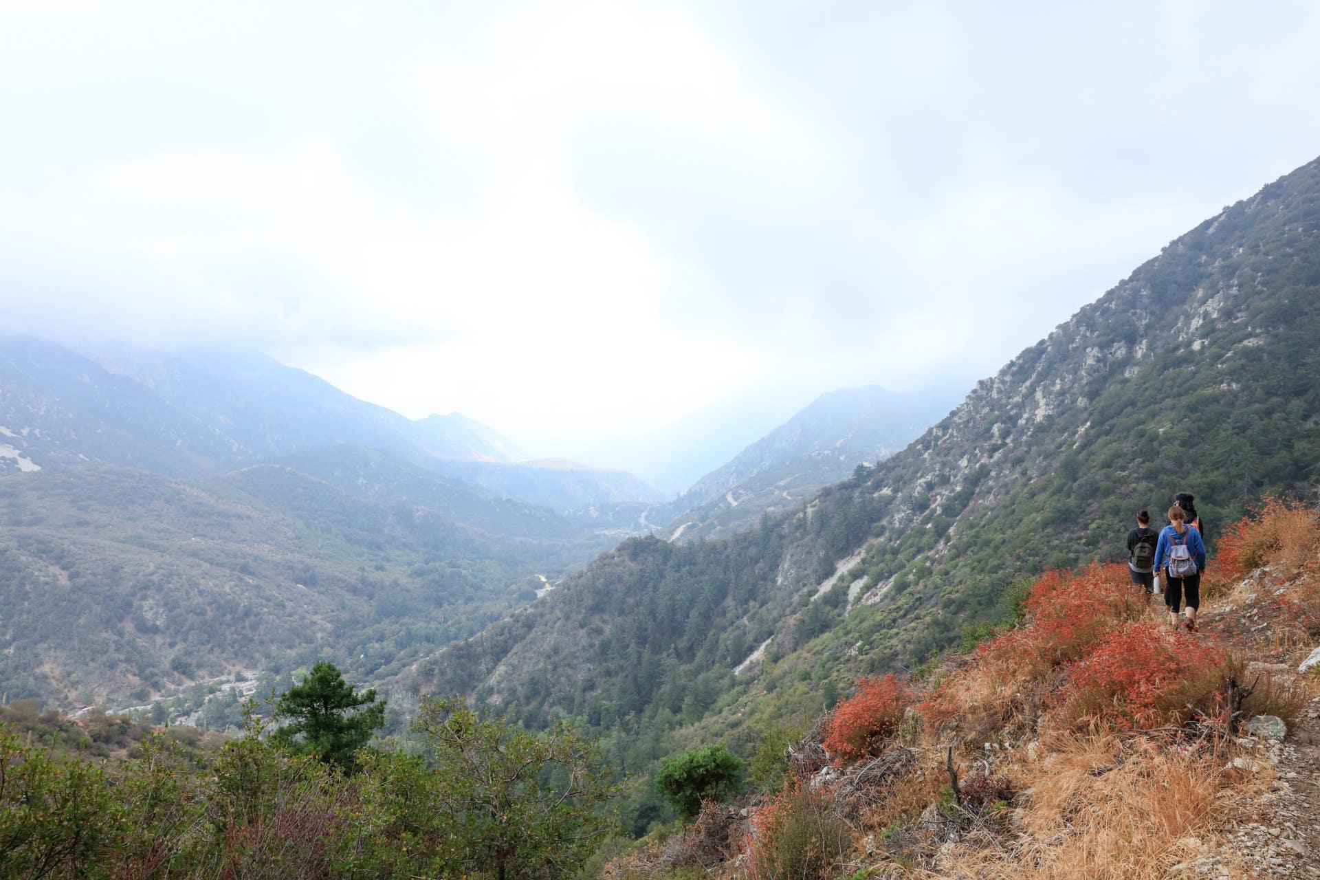Hiking Bear Canyon Trail (aka Old Mt. Baldy Trail)