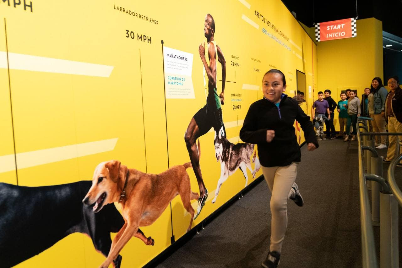 Dogs! A Science Tail at California Science Center | Photo: Wallis Annenberg PetSpace, Facebook