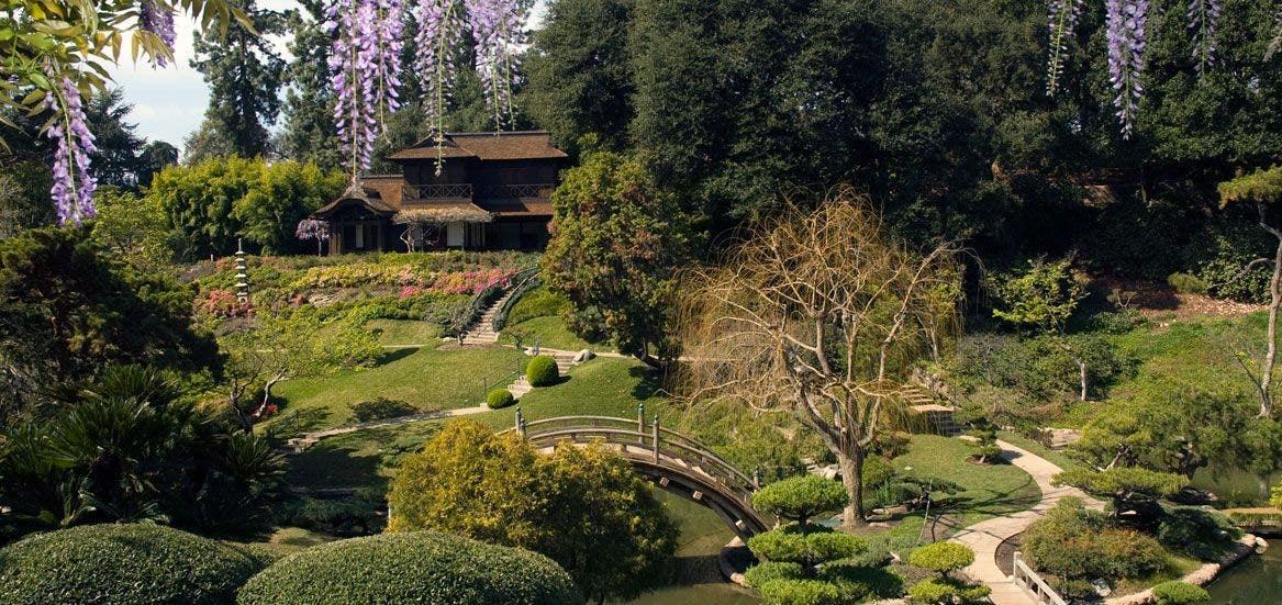 Japanese Garden at The Huntington Library