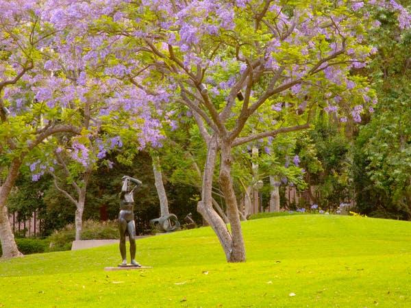 Franklin D. Murphy Sculpture Garden at UCLA