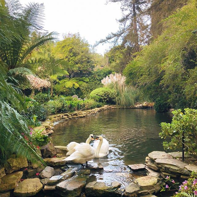 Instagram image from Hotel Bel-Air