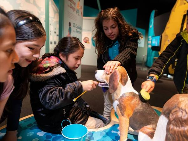 Dogs! A Science Tail at California Science Center