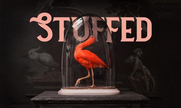 Stuffed Screening