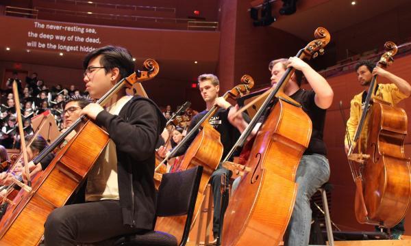 AYS Bass Players at the Walt Disney Concert Hall