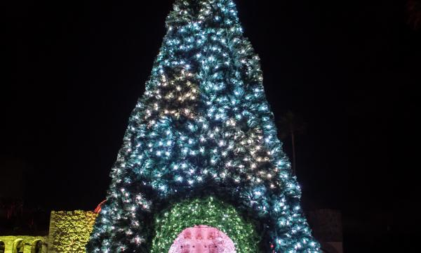 The illuminated 30 foot tree stands at the entry way to the festively decorated Great Stone Church