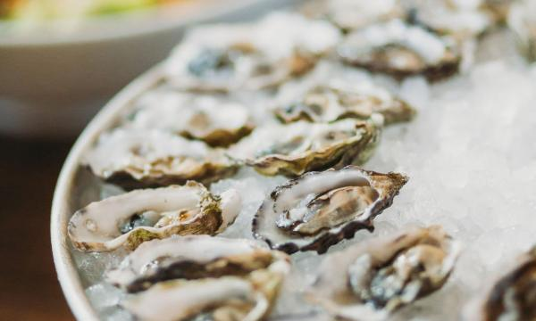 Oyster Platter Photo Credit: @dianafeil_photography
