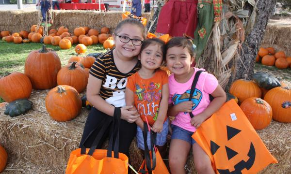 The annual Pumpkin Festival is organized by the Museum's volunteer support group, The Circle of Friends, and offers even the youngest children a fun and safe way to celebrate the season.