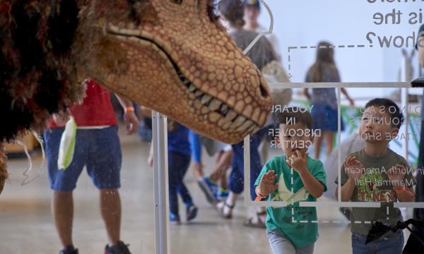 Dino Fest at NHM!