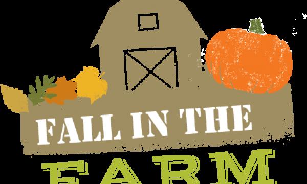 Fall in the Farm