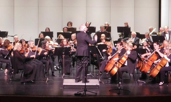 San Fernando Valley Symphony Orchestra Image