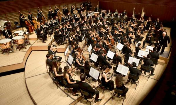 Overhead shot of a full western classical orchestra.