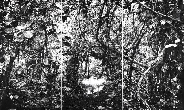 "At Lois Lambert Gallery, Tomás Ochoa, ""Amazonia on Fire"", 9.85""x 140"", Gunpowder on canvas"