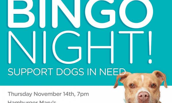 Wags and Walks Bingo Night - prizes, live auction packages. Thursday, November 14th at 7:00 PM at Hamburger Mary's West LA.