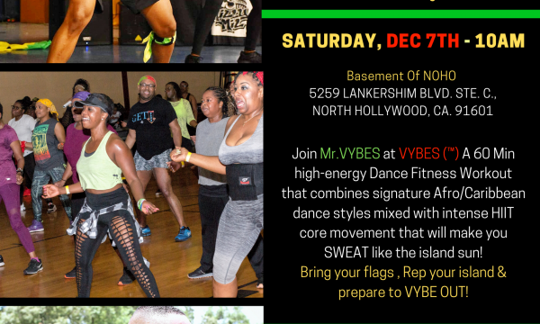 VYBES Caribbean Dance Fitness Party