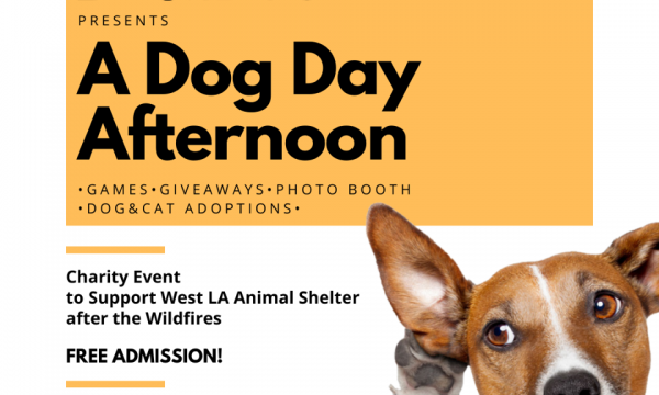 Dog for Dog Event at Boomtown Brewery
