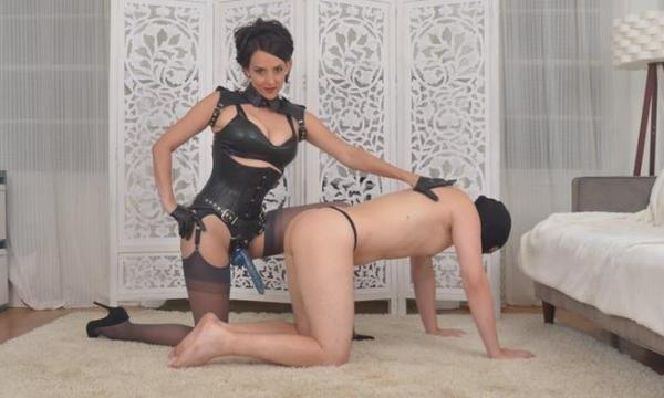 STRAP-ON & ANAL TRAINING!