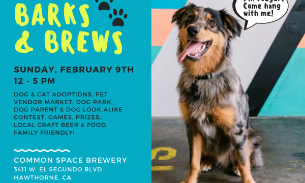Barks & Brews at Common Space Brewery