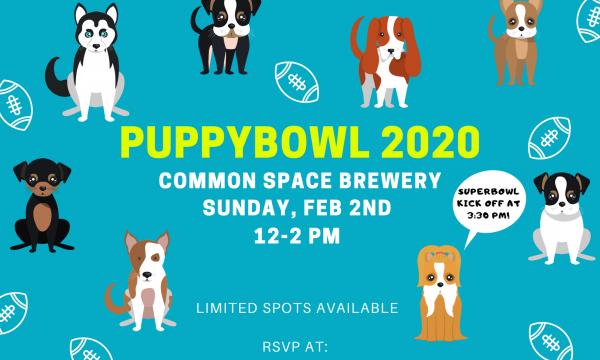 Puppybowl 2020