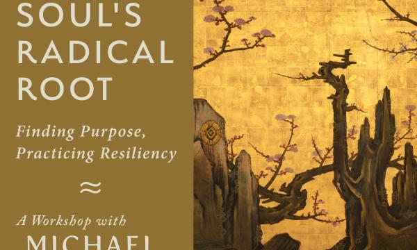 The Soul's Radical Root - Workshop