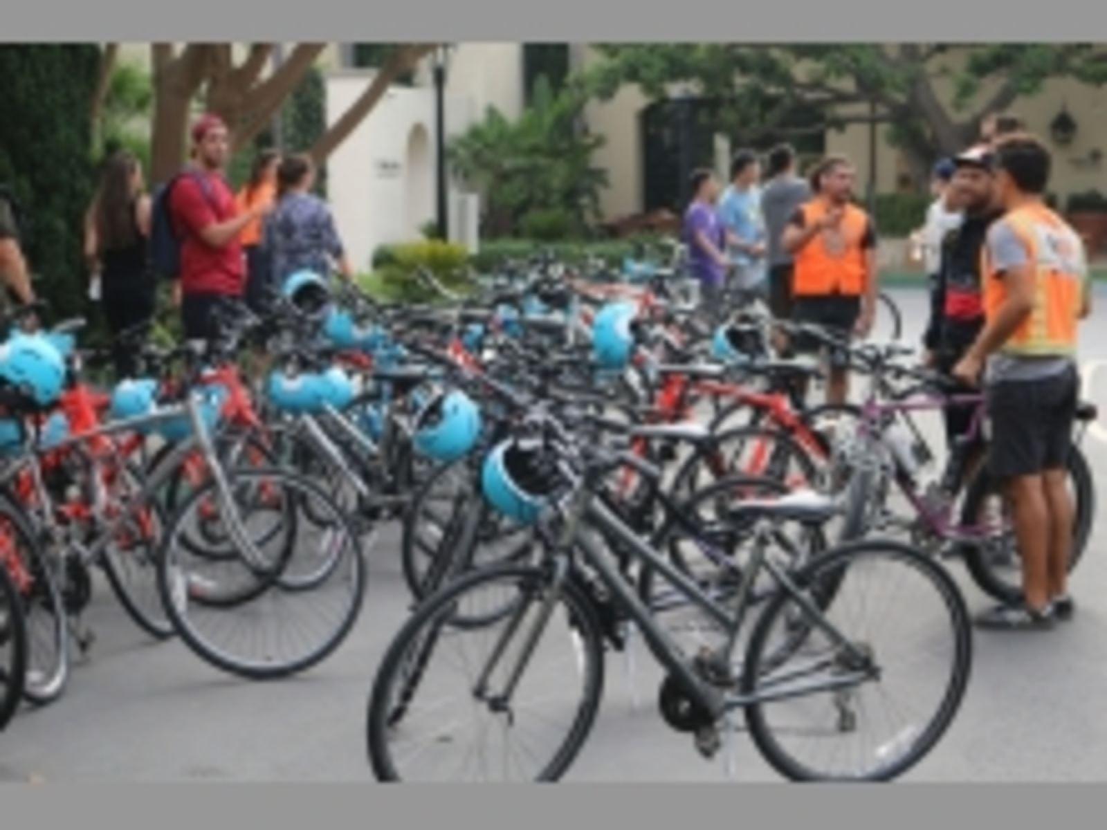 LA Cycle Tours Bikes