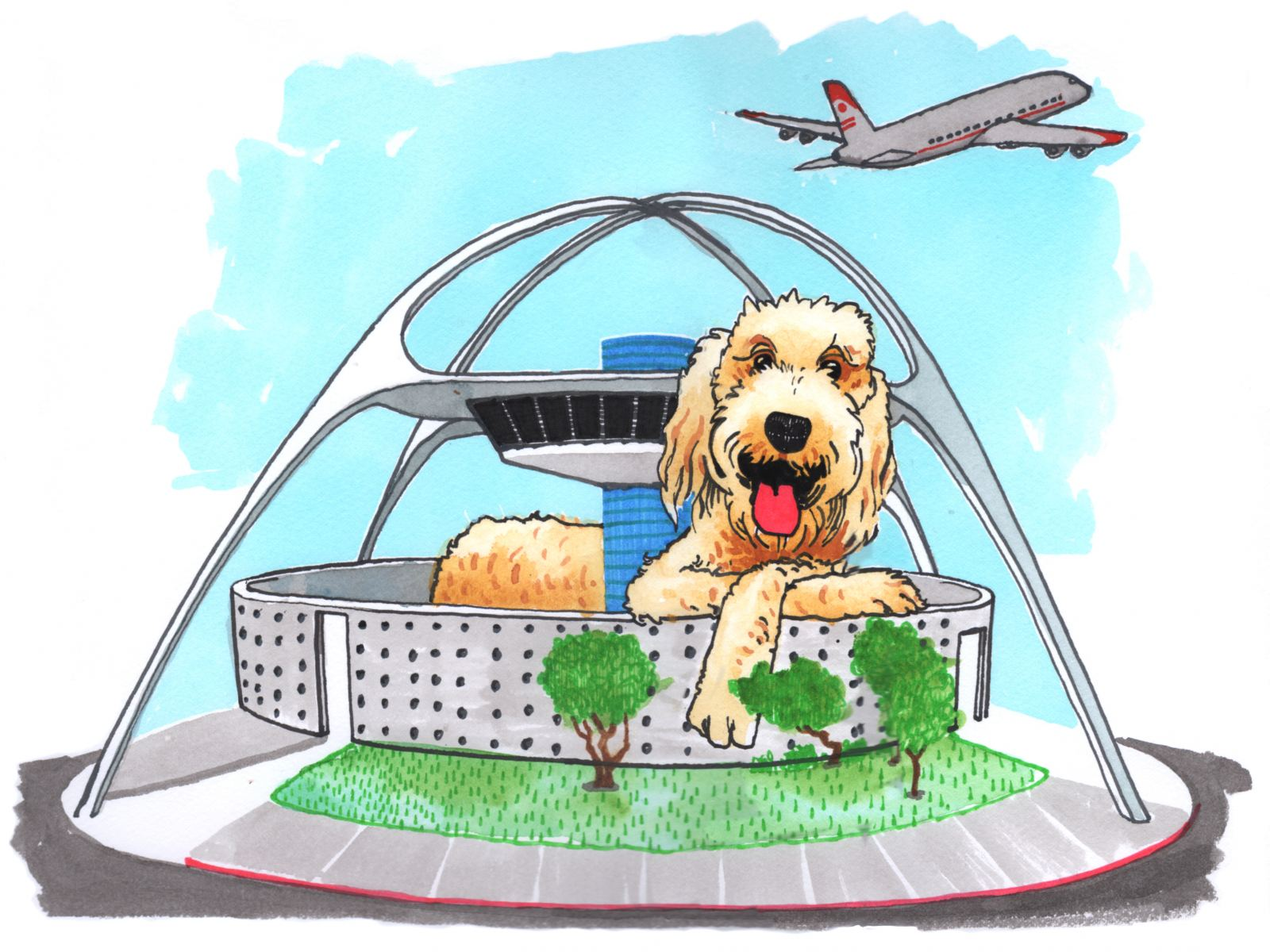 Labradoodle at LAX | Illustration by Max Kornell