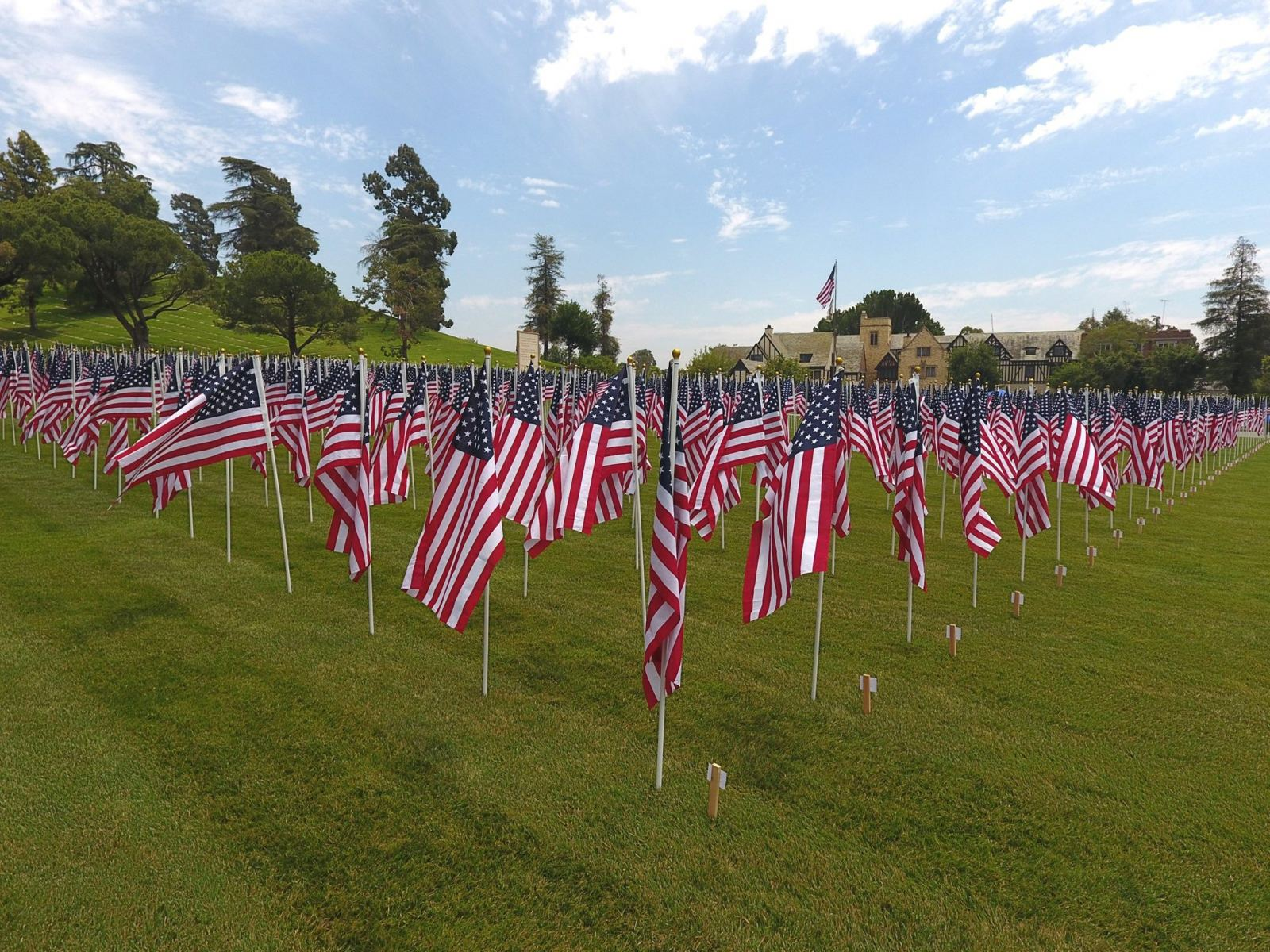 Memorial Day flags at Forest Lawn