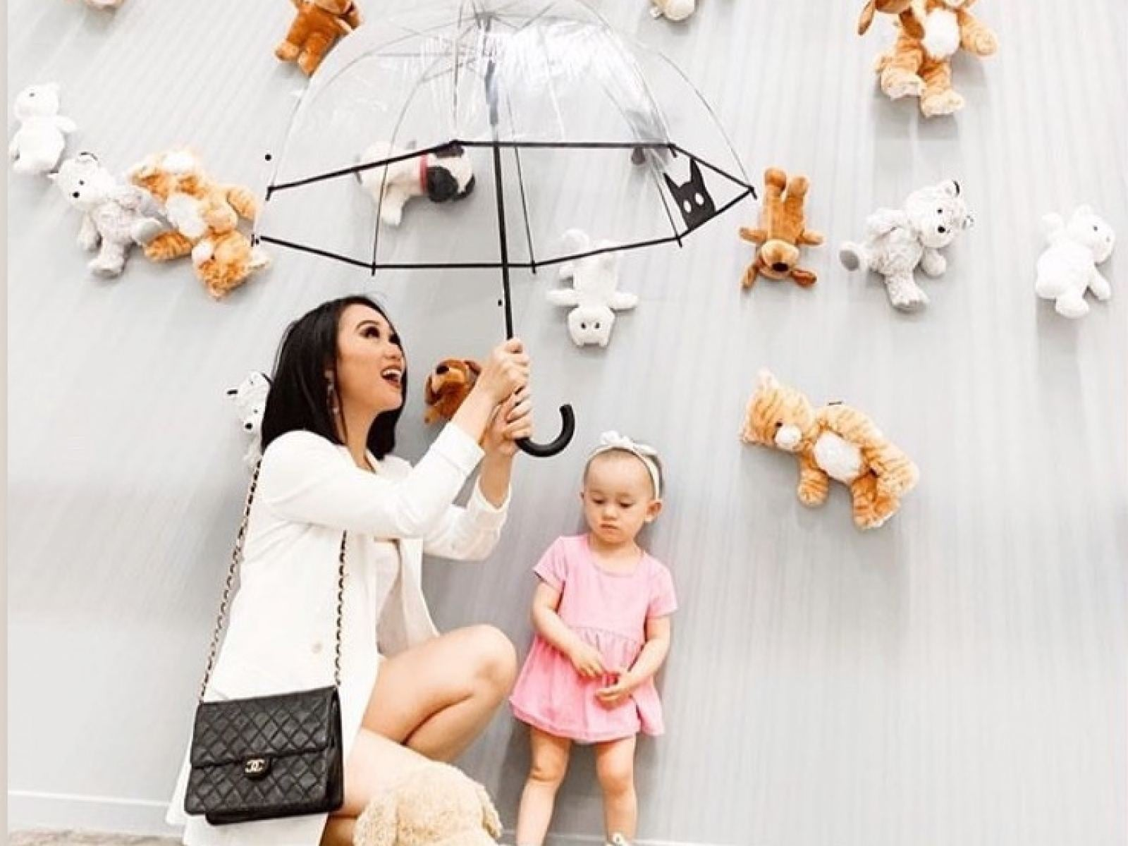 Raining Cats and Dogs at PetPop
