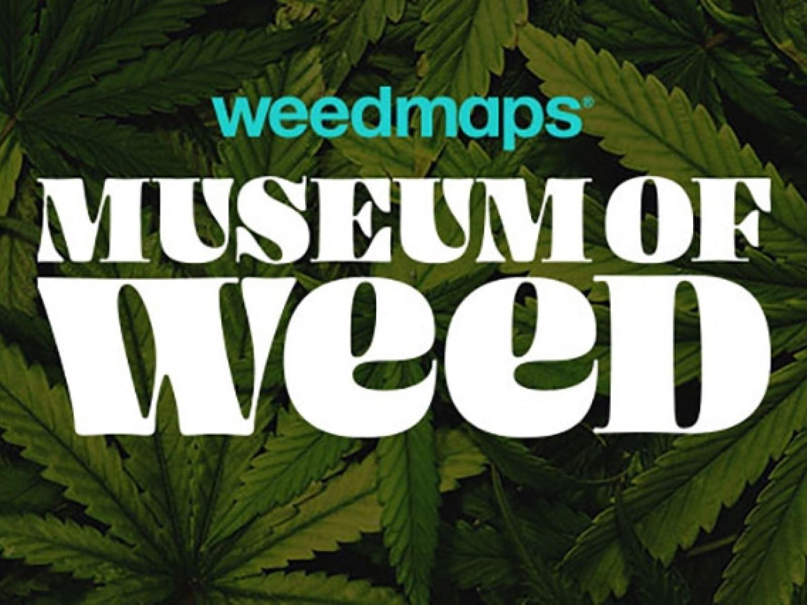 Weedmaps Museum of Weed | Discover Los Angeles
