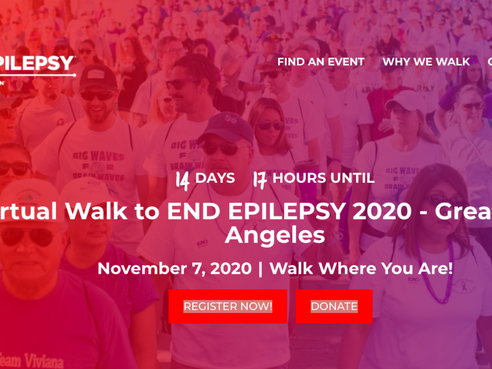 Main image for event titled Virtual Walk to End Epilepsy