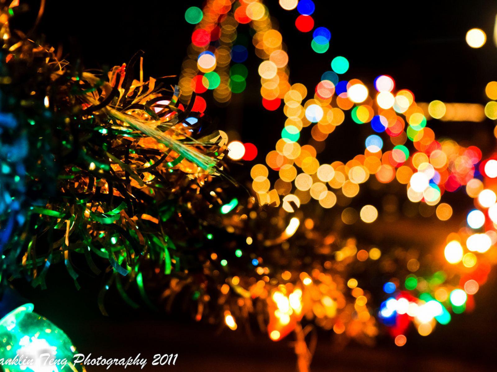 A Rena Mais Famosa Do Papai Noel luzes de natal em los angeles  discover los angeles