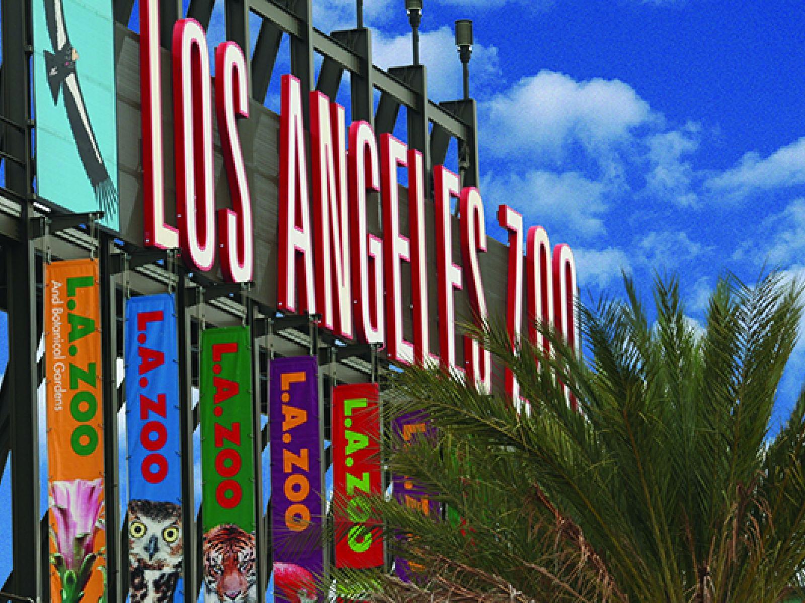 Main image for article titled El Zoológico de Los Ángeles