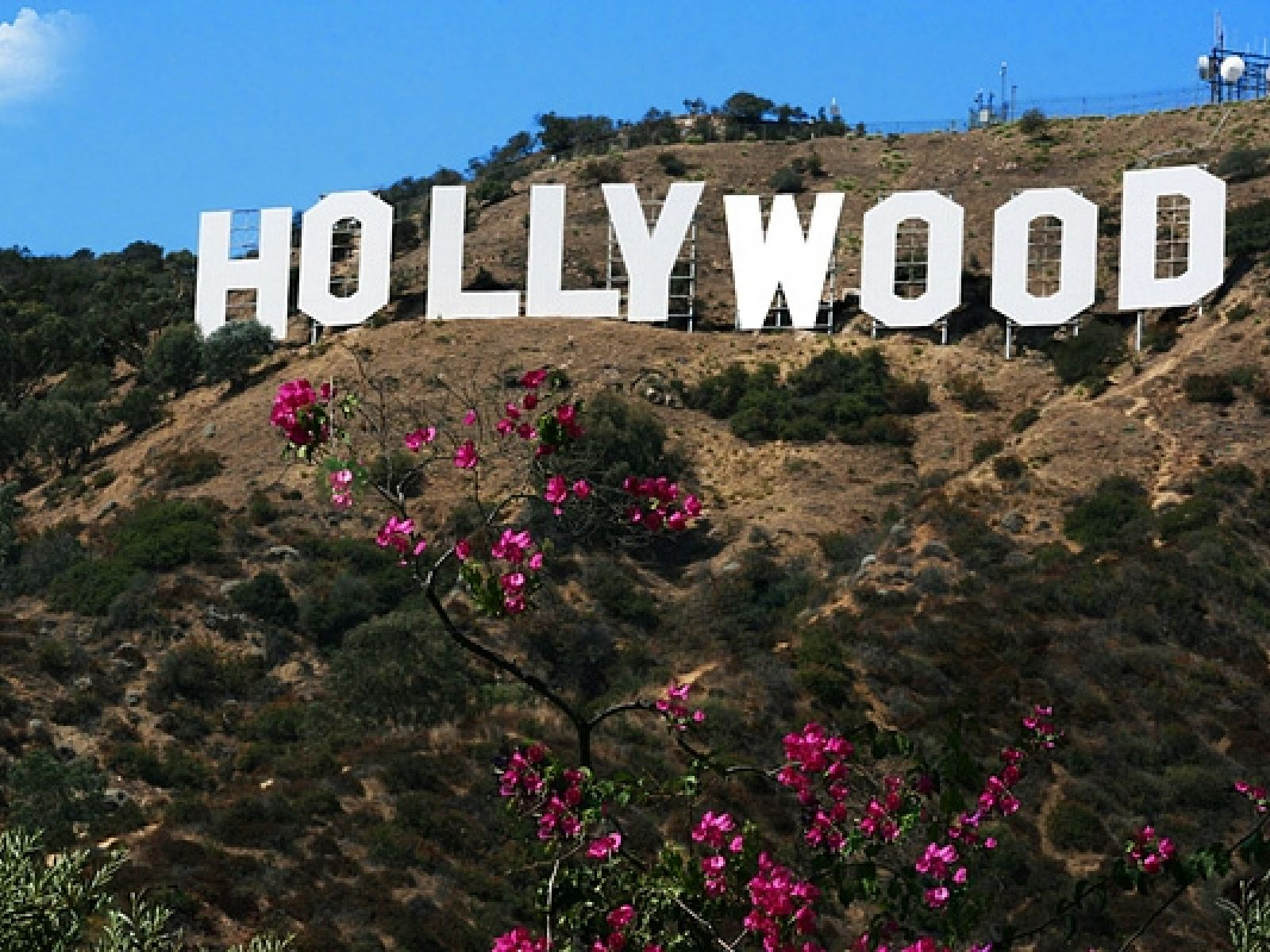 Main image for article titled Las Mejores Panorámicas del Letrero de Hollywood