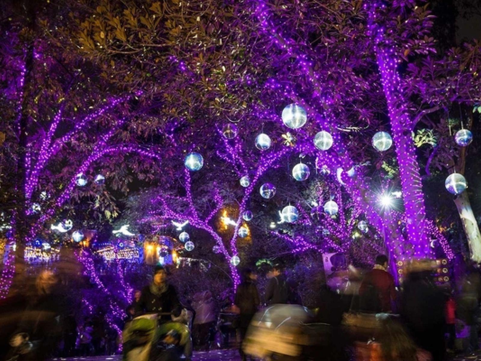 6c92057ba73 Las Mejores Luces Navideñas en Los Ángeles