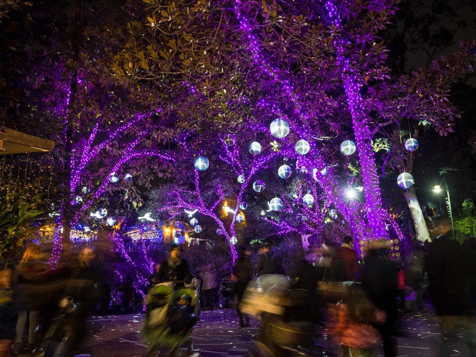 The Best Holiday Lights In Los Angeles