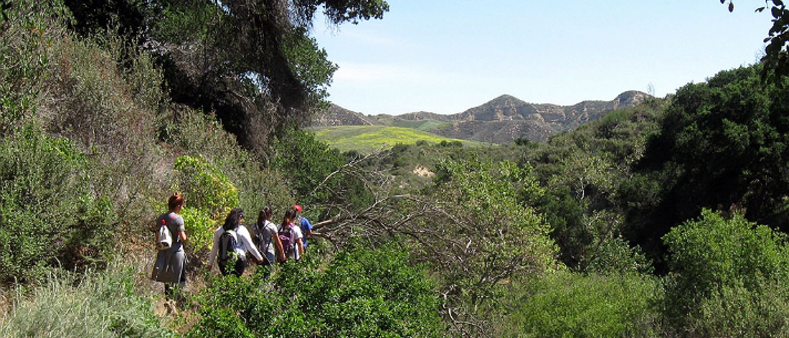 The Guide to Camping Sites Near Los Angeles | Discover Los