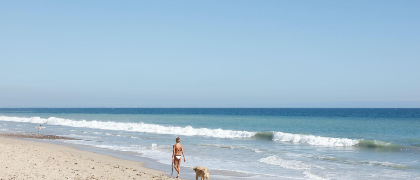 Carbon Beach Woman Dog
