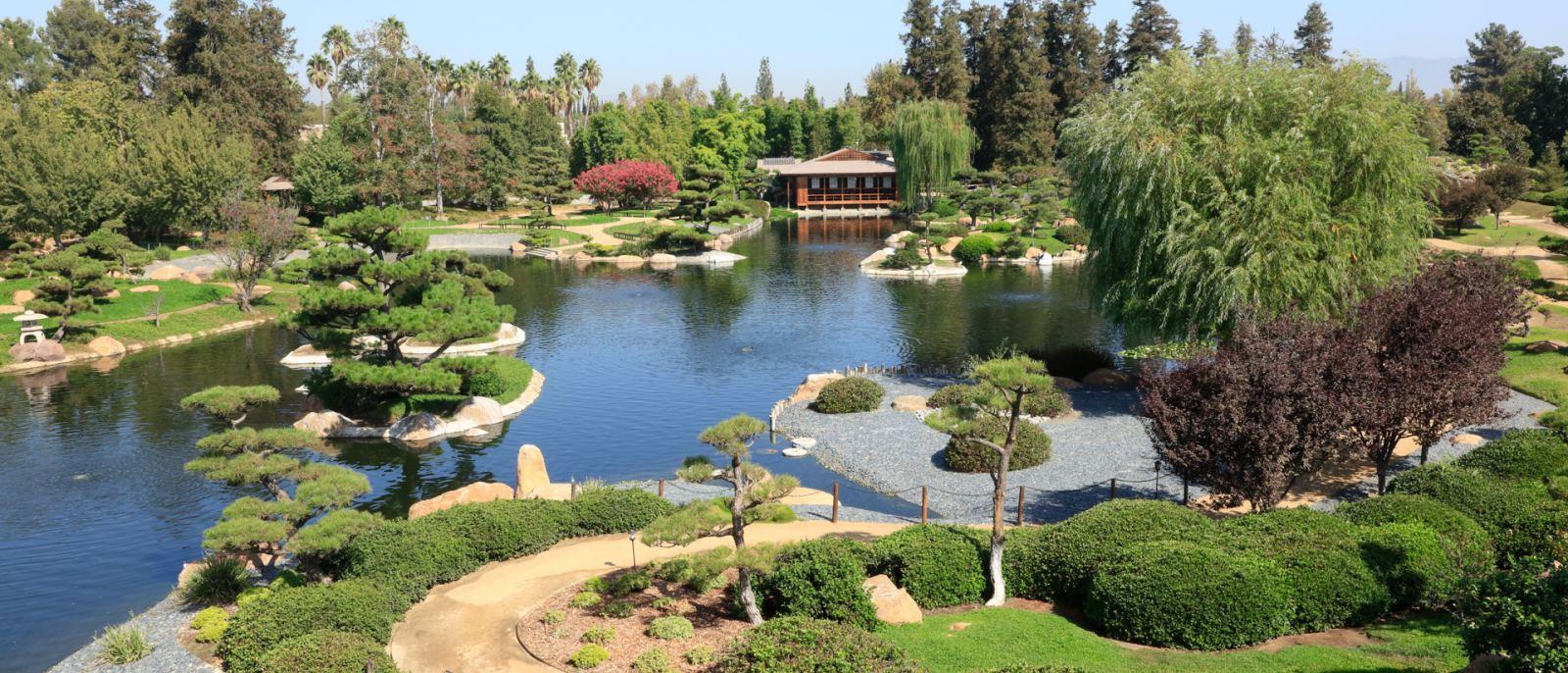 Fantasy Art Lush Garden