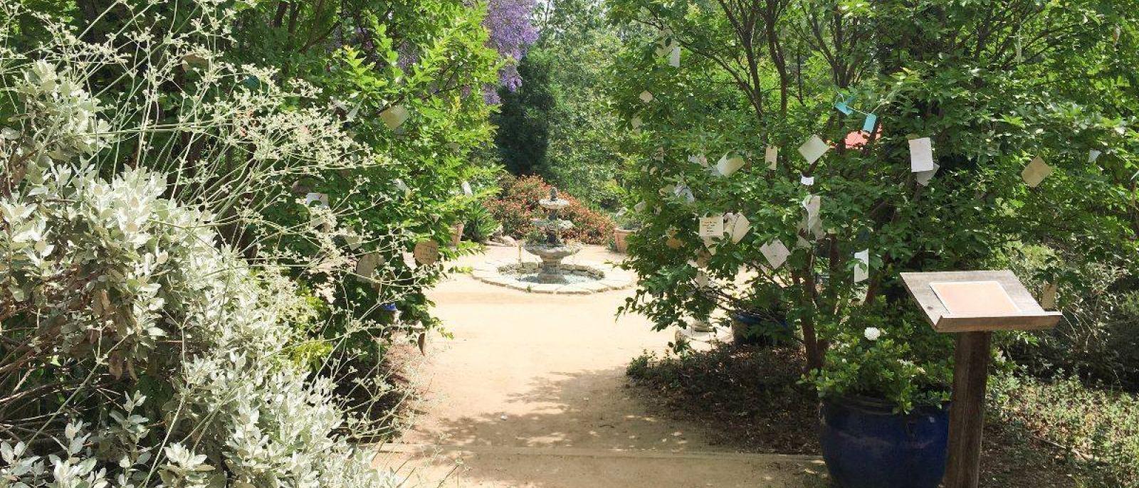 Wish Trees at Arlington Garden in Pasadena