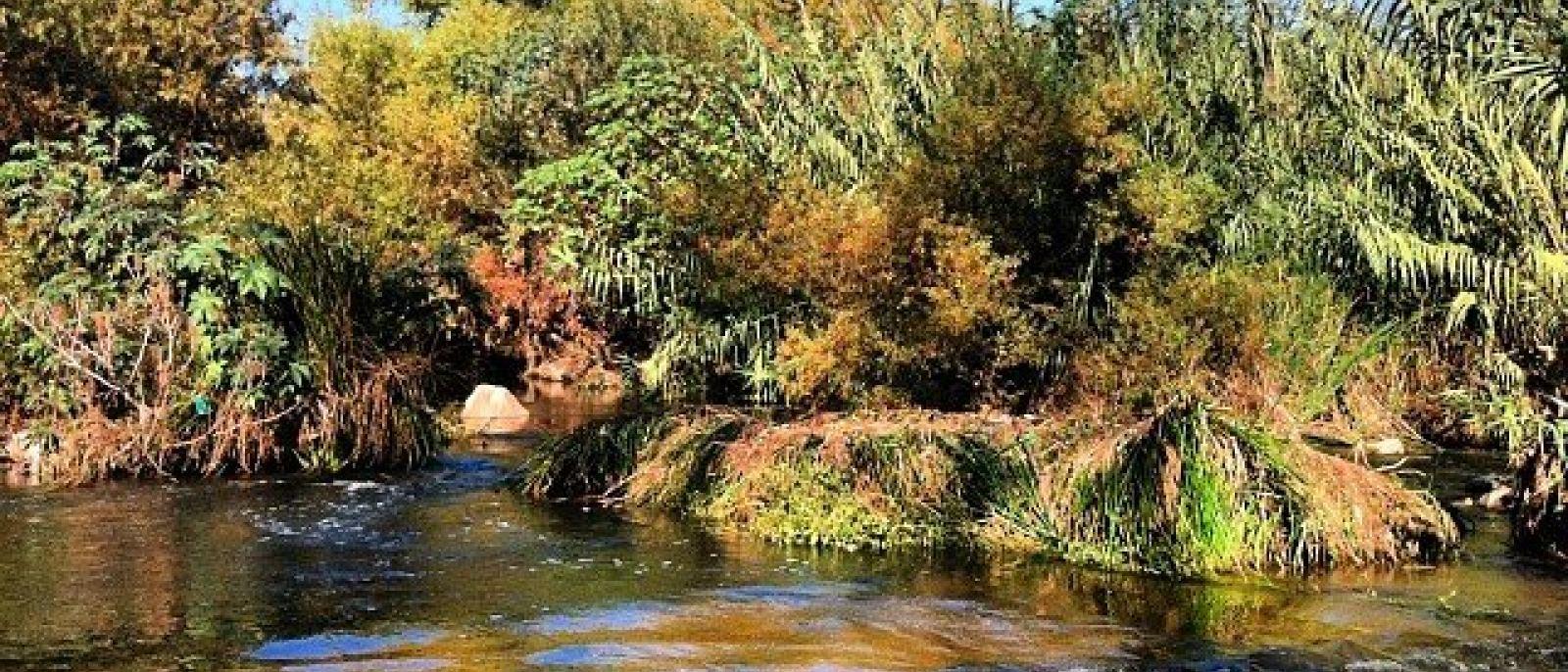 Poisson Rouge Bassin Extérieur top 10 des lieux extérieurs les plus populaires de los