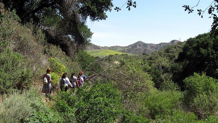 Hiking in Placerita Canyon