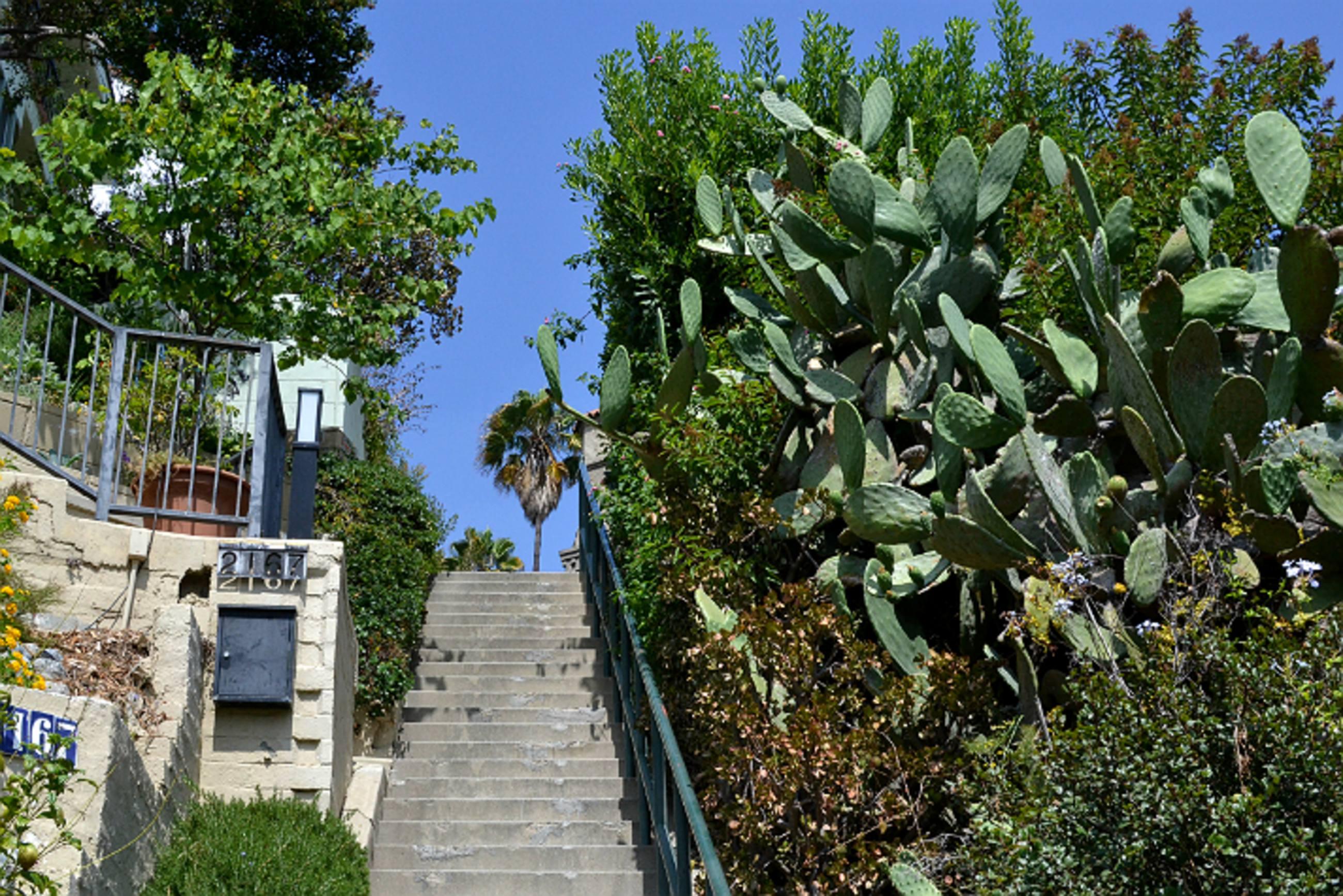 Broadview Terrace Stairs|Photo: Joshua Lurie
