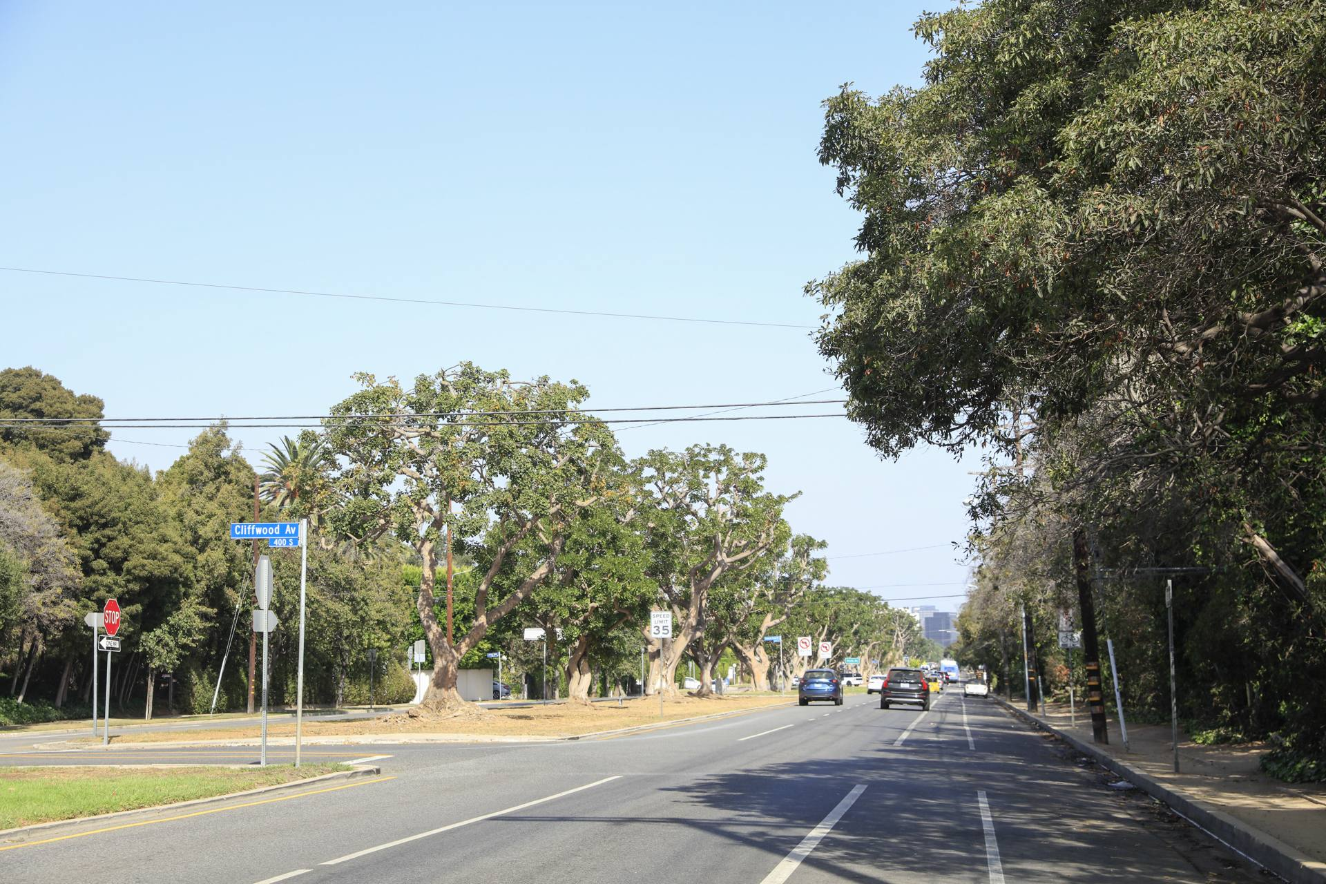 San Vicente Boulevard in Brentwood