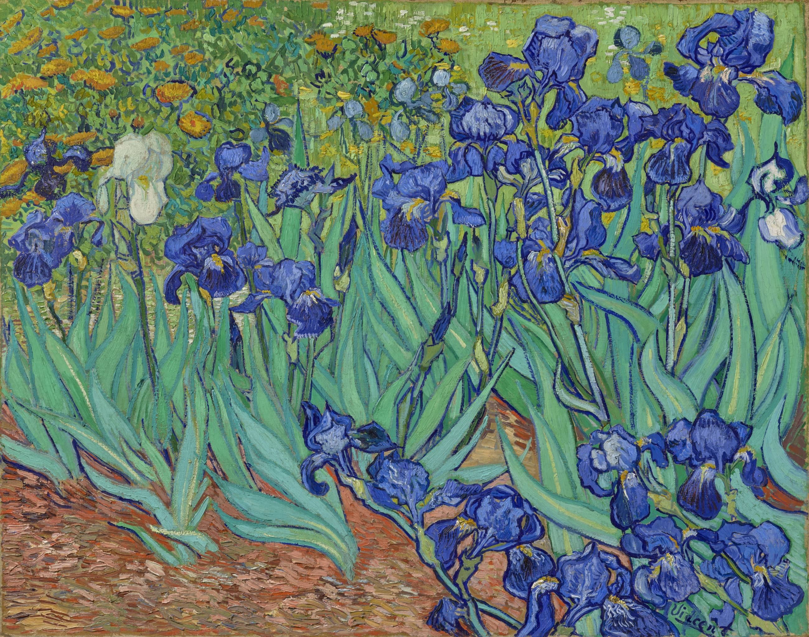 "Vincent van Gogh, ""Irises"" (1889) at the Getty Center"